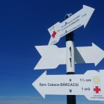 indicator pe culmea stanisoara, la bifurcatie cu cruce galbena